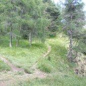 Die Wanderwege vom Mendelpass