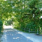 D-0104-ueberetscher-spazierweg-bei-kaltern.jpg