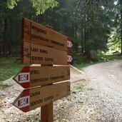 D-0241_wanderweg_gfrill_weissensee_trudner_horn.jpg