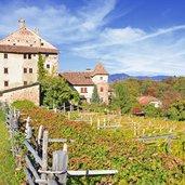 D-Eppan-Herbst-Schloss-Moos-5682.jpg