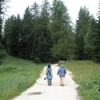 The trail to the Passo della Mendola is wide and ideal for a pleasant and not too challenging walk. Foto: RD, © Peer