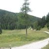 "L'incrocio ""Sentiero al Monte Roen - Rifugio Oltradige"". Foto: RD, © Peer"