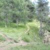 Die Wanderwege vom Mendelpass zum Penegal haben ihren besonderen Reiz. Foto: RD, © Peer