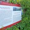 Wein ist Wirtschaft, aber auch Kultur. So wurde der Weinlehrpfad durch die Umgebung von Girlan angelegt. Foto: AT, © Peer
