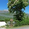 Proceeding towards Caldaro. In the background the Mendola mountain ridge. Foto: AT, © Peer