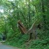Denn wir finden uns wieder im Kunstpark Hochfrangart - im dichten Laubwald stehen verschiedene Kunstwerke, die sich in die Natur einfügen. Foto: AT, © Peer