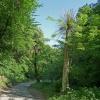 Lungo il sentiero si trovano diverse installazioni: questo è il parco artistico di Frangarto. Foto: AT, © Peer