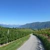 Obst- und Weinbau sind die Grundpfeiler der Landwirtschaft im sonnigen Girlaner Gebiet. Foto: AT, © Peer