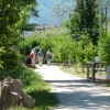 By walking round the lake you can receive various impressions. Foto: AT, © Peer