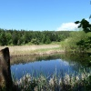 The southern lakeside is surrounded by reeds. Foto: AT, © Peer