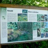 Various panels inform you about the animal and plant species of this area. Foto: AT, © Peer