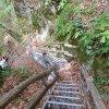 Ein Geheimtipp für Naturfreunde und Wanderer: Die Rastenbachklamm bei Altenburg oberhalb von Kaltern. Foto: AT, © Peer