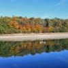 Der Perdoniger Wasserspeicher spiegelt die Herbstfarben wider. Foto: EMS, © Peer