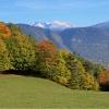 Herbstliche Aussicht in Richtung Latemar. Foto: EMS, © Peer