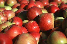 Suedtiroler Produkte -> Apfel 2011