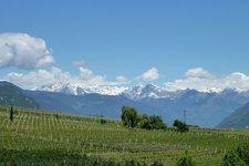 Wein-Tipps 2011