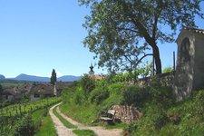 Natur-und Weinlehrpfad 2011