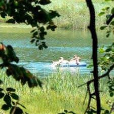 Schwimmen in den Montiggler Seen