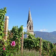 Südtirol Balance - Pilgerwanderung