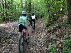 MTB-Tour Montiggler Wald