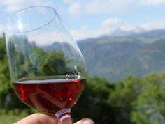 Tag des Weines in Eppan 2011