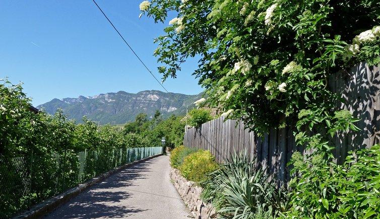On the Oltradige hiking trail to Caldaro, Foto: AT, © Peer