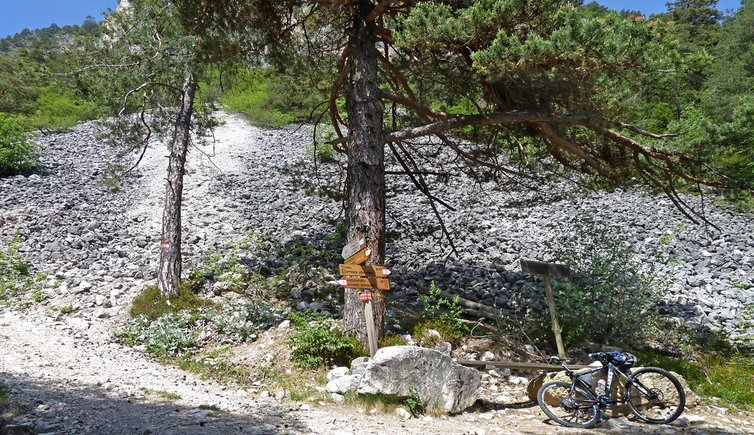 Escursione in mountain bike sull\'Alta Via di Appiano, Foto: AT, © Peer