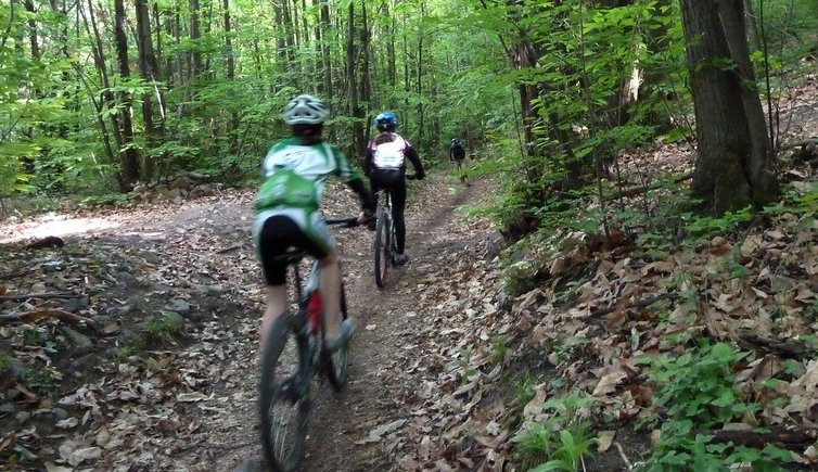 Mountainbike-Tour durch den Montiggler Wald, Foto: AT, © Peer