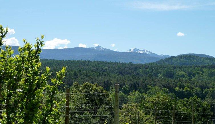 Montiggler Wald, Foto: AT, © Peer