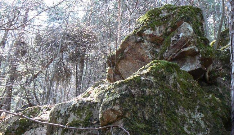 Geologie in Eppan, Foto: ED, © Peer