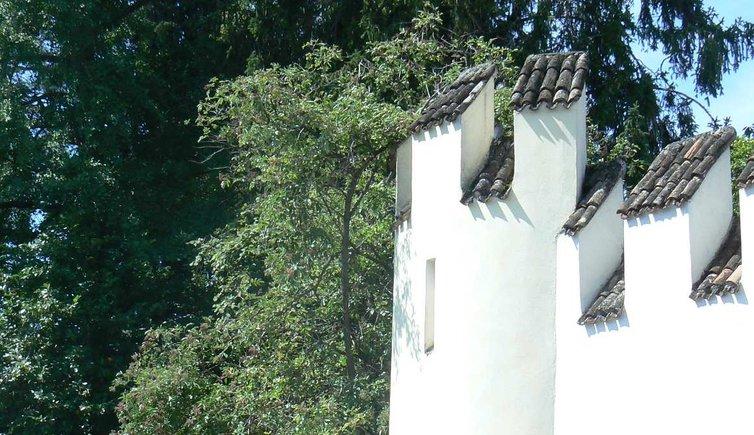 Schlossruine Altenburg, Foto: ED, © Peer