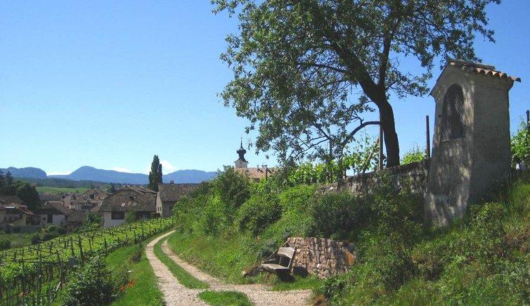 Natur- und Weinlehrpfad, Foto, © Tourismusverein Eppan