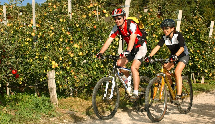 Mountainbiking & cycling, Foto: CG, © fotoarchiv.it
