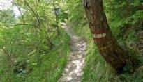 Am Eppaner Höhenweg nach Buchwald 2011