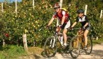 Rad & Mountainbike 2011